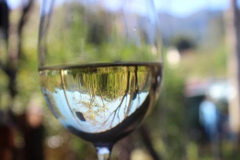 wine-1644213_1280