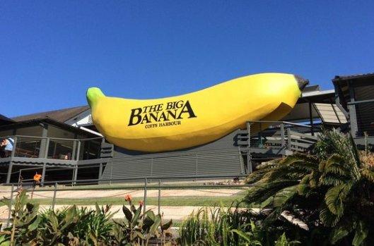 big-banana
