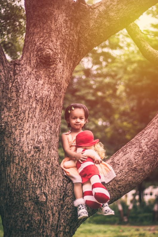 Child sitting in a tree with her doll.